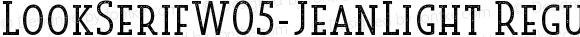 LookSerifW05-JeanLight