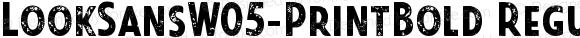 LookSansW05-PrintBold