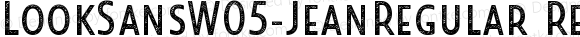 LookSansW05-JeanRegular