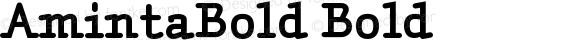 AmintaBold Bold Version 001.000