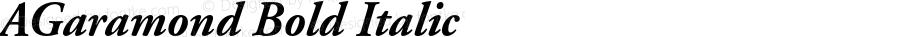 AGaramond Bold Italic OTF 1.0;PS 001.003;Core 1.0.22