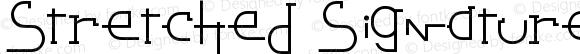 Stretched Signature Best Italic