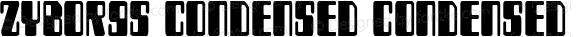 Zyborgs Condensed Condensed