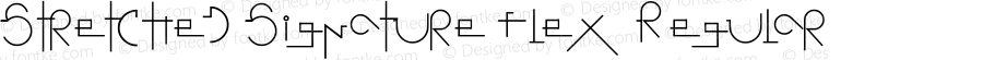 Stretched Signature Flex Regular Version 2.90 December 5, 2009
