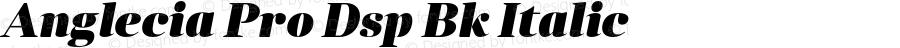 Anglecia Pro Dsp Bk Italic Version 001.000