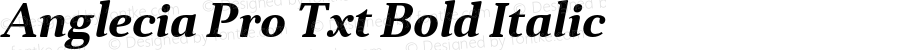 Anglecia Pro Txt Bold Italic Version 001.000