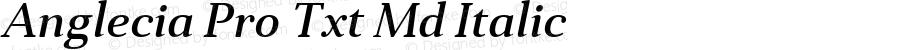 Anglecia Pro Txt Md Italic Version 001.000