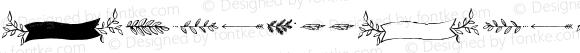 AmorettaOrnaments-Regular ☞ Version 1.000;PS 001.000;hotconv 1.0.70;makeotf.lib2.5.58329;com.myfonts.easy.tart-workshop.amoretta.ornaments.wfkit2.version.4jJr