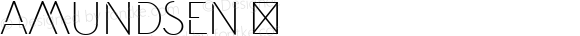 Amundsen ☞ Version 1.000 2013 initial release;com.myfonts.easy.juraj-chrastina.amundsen.regular.wfkit2.version.42D5