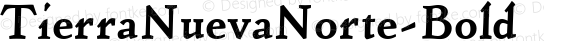 TierraNuevaNorte-Bold ☞ 001.001;com.myfonts.easy.fdi.fdi-tierra-nueva.bold.wfkit2.version.3rYW