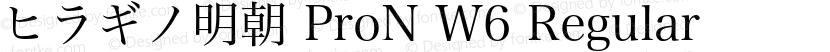 ヒラギノ明朝 ProN W6 Regular Preview Image