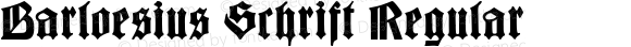 Barloesius Schrift Regular Version 1.000