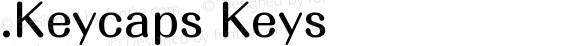 .Keycaps Keys