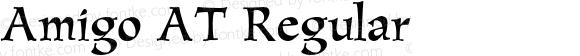Amigo AT Regular Version 1.100;PS 001.001;Core 1.0.38