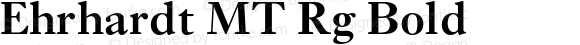 Ehrhardt MT Rg Bold OTF 1.0;PS 001.003;Core 1.0.22