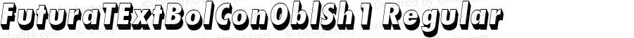 FuturaTExtBolConOblSh1 Regular Version 001.005