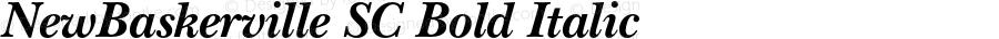 NewBaskerville SC Bold Italic OTF 1.0;PS 001.000;Core 1.0.22