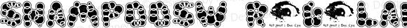 ShampooSW Regular Macromedia Fontographer 4.1.2 11/29/96
