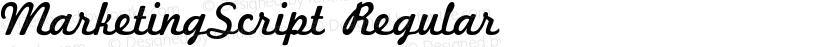 MarketingScript Regular Preview Image