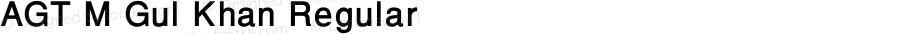 AGT M Gul Khan Regular Version 1.00 December 20, 2015, initial release