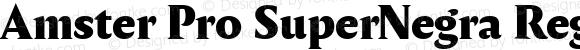 Amster Pro SuperNegra Regular Version 1.000;PS 001.000;hotconv 1.0.70;makeotf.lib2.5.58329