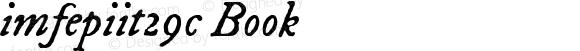 imfepiit29c Book