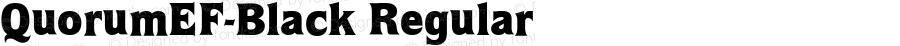 QuorumEF-Black Regular OTF 1.100;PS 001.001;Core 1.0.29