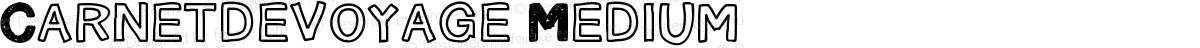 Carnetdevoyage Medium