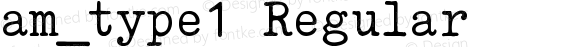 am_type1 Regular Version 1.0 (2016)