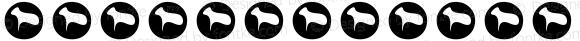 Unicode内码天珩输入法配套字体 Regular