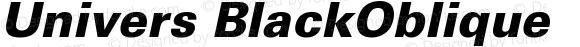 Univers CE 75 Black Oblique