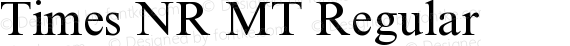 Times NR MT Regular preview image