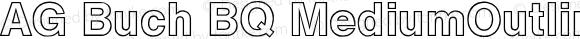 AG Buch BQ MediumOutline