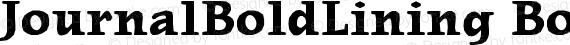JournalBoldLining BoldLining preview image