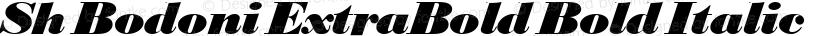 Sh Bodoni ExtraBold Bold Italic Preview Image