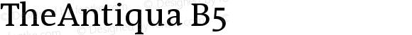 TheAntiqua B5 Version 001.000
