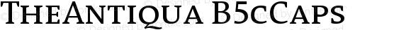 TheAntiqua B5cCaps Version 001.000
