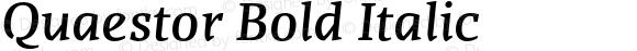 Quaestor Bold Italic