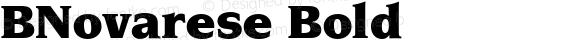 BNovarese Bold preview image