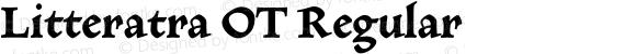 Litteratra OT Regular preview image