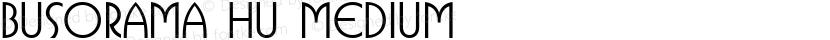 Busorama HU Medium Preview Image
