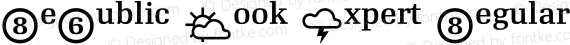RePublic Book Expert Regular preview image