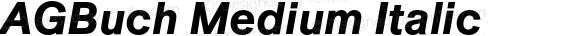 AGBuch Medium Italic 4.0