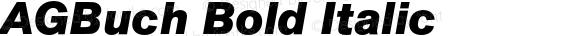 AGBuch Bold Italic 4.0