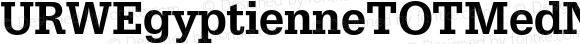 URWEgyptienneTOTMedNar Regular Version 1.000;PS 1.05;Core 1.0.35