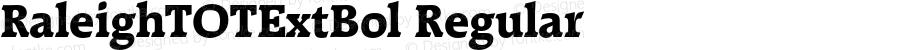 RaleighTOTExtBol Regular Version 1.000;PS 1.05;Core 1.0.35
