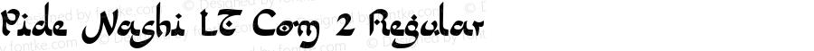 Pide Nashi LT Com 2 Regular Version 1.01