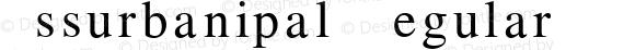 Assurbanipal Regular