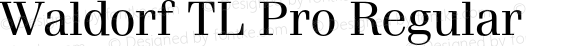 Waldorf TL Pro Regular Version 1.00; 2009