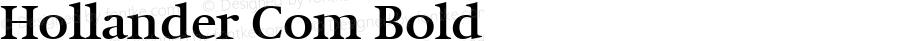 Hollander Com Bold Version 1.20